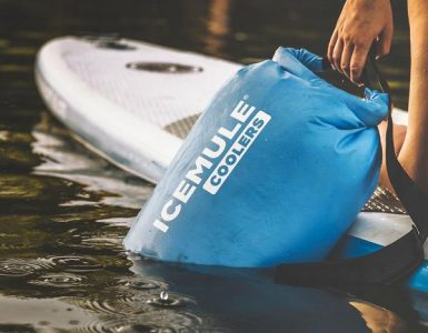 ICEMULE Classic Backpack Cooler Review - BestBackpack